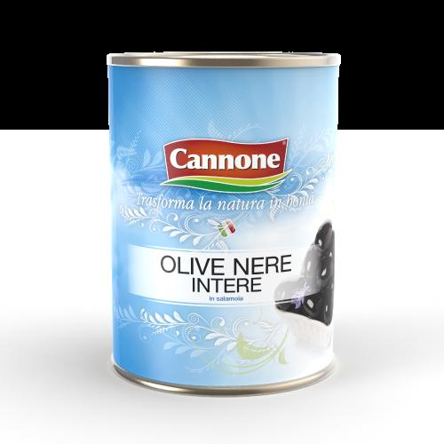 e1524-cannone_aggiornamento-sito-web_immagini-prodotti_olive-11